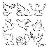 duif : vliegende duif schets collectie cartoon illustratie