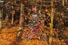 Mountain Biking Fall Picture
