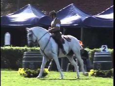 Working equitation Ease of Handling Trial - YouTube