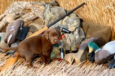 duck hunting clothes | ... Duck Hunter's Gift Guide | Greenhead.net | The Arkansas Duck Hunting