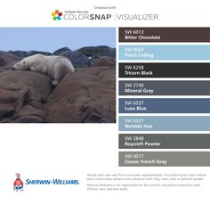I found these colors with ColorSnap® Visualizer for iPhone by Sherwin-Williams: Bitter Chocolate (SW 6013), Porch Ceiling (SW 9063), Tricorn Black (SW 6258), Mineral Gray (SW 2740), Luxe Blue (SW 6537), Notable Hue (SW 6521), Roycroft Pewter (SW 2848), Classic French Gray (SW 0077).