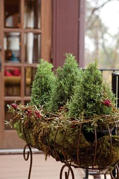 Maybe for the window boxes this year
