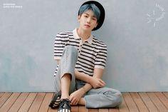 Seventeen Facts, Carat Seventeen, Seventeen Wonwoo, Seventeen Debut, Diecisiete Wonwoo, Seungkwan, Jeonghan, Seventeen Ideal Type, Hip Hop