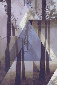 photography art vintage landscape trees triangle nature forest fog rainbows puke vertical experiment