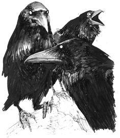 Crows illustration. Tattoo inspiration.