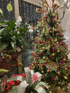 Decorated For The Holidays Wedding Flowers, Christmas Tree, Holidays, Holiday Decor, Home Decor, Teal Christmas Tree, Holidays Events, Decoration Home, Room Decor