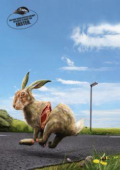 lazer_roadkill_rabbit_rgb1