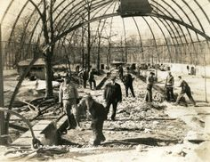 Bird Cage Repairs in Forest Park Zoo, 13 February 1934. ©Missouri History Museum