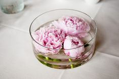 Floating Peonies #peonies