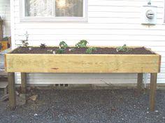 Waist high raised garden beds waist high garden beds - Waist high raised garden bed plans ...