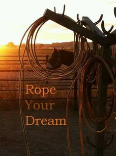 Rope Your Dream Rodeo Quotes, Western Quotes, Cowboy Quotes, Horse Quotes, Country Quotes, Country Life, Country Girls, Equestrian Quotes, Equine Quotes
