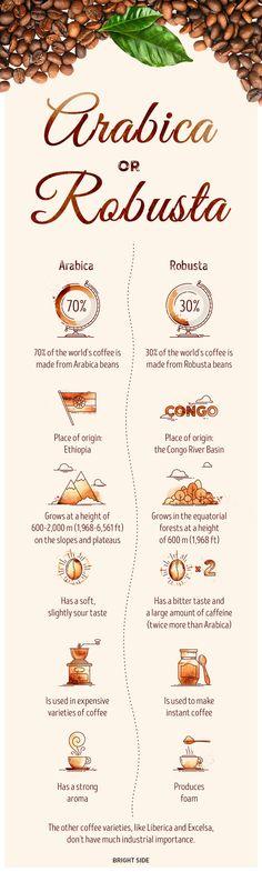 Каква еразликатамежду кафеАрабика и Робуста? По какъв начин може да приготвите кафето? Как се пече кафето? Кои страни са най-големите производители на кафе?Отговор на тезивъпросидават следващите четири инфографики, от които ще научите още интересни факти за най-предпочитанататопла напиткав света.