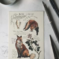 """Thanks to everyone who has been stopping by the shop today on Etsy! I am still in the process of completing a few more pieces, and will share them as they are listed. I have also finally added a small amount of 5x7"""" prints of the fox and hare journal pages, so be sure to snag one while they last ✨"""