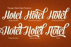 Voyage font. vintage script family of two weights and ornament set of 132 typographic ornaments and symbols. alternate characters and OpenType features to allow you create customized headlines. Swash, Contextual, Stylistic or Titling Alternates or Discretionary Ligatures. Combine Voyage with Voyage Ornaments to complete your designs.