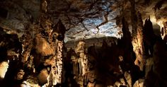"Cathedral Caverns State Park is worth the trip. Inside the cavern are some of the most beautiful formations Mother Nature has ever created including ""Goliath""-- one of the largest stalagmites in the world measuring 45 feet tall and 243 feet in circumference."