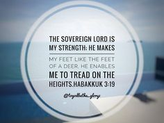 The Sovereign Lord is my strength; he makes my feet like the feet of a deer, he enables me to tread on the heights. Hab 3:19 #god #jesuschrist #bible #bibleverse #biblequotes #bibleverses #christianity #dailywordofgod #dailyreadings #inspiration #motivation #inspire #redeemed #saved