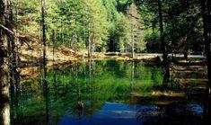 Ζορίκα: Η λίμνη με τα νούφαρα σε περιμένει για βόλτες στο δάσος - iTravelling Small Lake, Topographic Map, Looking Up, Greece, River, Mountains, Awesome, Outdoor, Greece Country