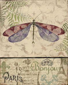 I uploaded new artwork to fineartamerica.com! - 'Vintage Wings-paris-f' - http://fineartamerica.com/featured/vintage-wings-paris-f-jean-plout.html via @fineartamerica