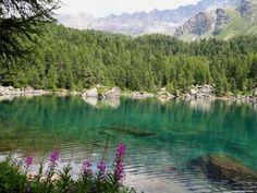Lagh da Saoseo #amazingnature #switzerland #schweiz #lake