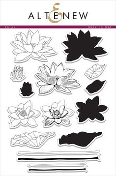 Illustrated by: May Sukyong Park  This set was inspired by the photo we took in South Korea. You can either use the outline images by themselves, or combine them with the solid images to get two distinct looks. Make endless arrangements with these unique floral stamps!