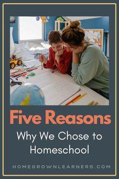 5 Reasons Why We Chose to Homeschool