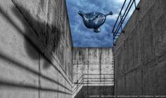 https://flic.kr/p/GTrYXG | INHOTIM . May 2016  05 | Inhotim, Museo y parque ecologico natural. Brumadinho, Minas Gerais. Fotografia: Artexpreso . Rodriguez Udias . *Photochrome Artwork Edition / BH, Brasil . May 2016 .. Website: rodudias.wix.com/artexpreso #Inhotim #artexpreso #photochrome #minasgerais #soubh