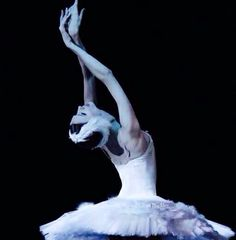 Svetlana Zakharova in Swan Lake