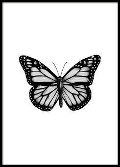 Black & White Poster Order black and white pictures online Desenio Poster S . - Black & White Poster Order black and white pictures online Desenio Poster Black White Monarch Butterfly Meaning, Monarch Butterfly Tattoo, Butterfly Tattoo Designs, Butterfly Painting, Butterfly Wallpaper, Butterfly Art, Butterfly Costume, Butterfly Sketch, Butterfly Design