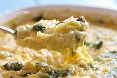 Baked Spaghetti Squash and Cheese | Skinnytaste