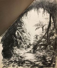 A quick 15minute sketch of the glow worm tunnel in Newnes, NSW