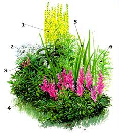 1000 images about gartenged ns on pinterest garten for Blumenbeet gestaltungsideen