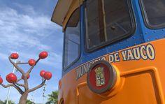 Aventúrate a conocer las maravillas de Yauco, PR