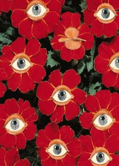 Eyeball flowers More painting trippy easy Grow the Classic Marigold Plant Art Inspo, Kunst Inspo, Psychedelic Art, Art And Illustration, Illustrations, Pop Art, Art Design, New Wall, Wall Collage