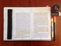 sociology-student:  politics notes