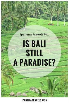 The truth about Bali: paradise lost, or the other face of tourism - overtourism | Ipanema travels to...