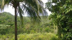 Swift River, Jamaica