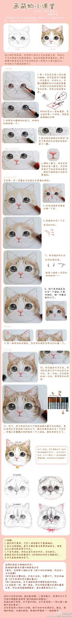 萌物小课堂——彩铅画猫步骤图~via:福阿包