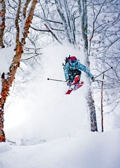HANAZONO Powder Guides | Snow Season | Niseko HANAZONO Resort