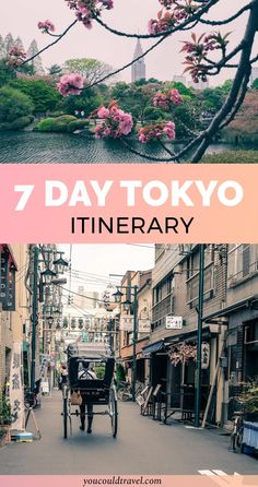 7 day Tokyo Itinerary - After spending months exploring the Japanese capital, we decided to put together a 7 day Tokyo itinerary to help you better tailor your trip. Japan is a wonderful country and Tokyo really is as colourful as you could imagine.