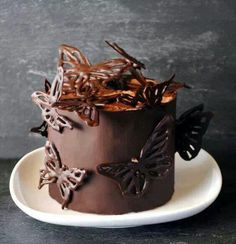 Whether it is iced in chocolate icing or covered in a chocolate fondant, accent it with these stenciled, chocolate butterflies. Make some with dark chocolate, and some with milk to create color variations. Pretty Cakes, Beautiful Cakes, Amazing Cakes, Fancy Cakes, Mini Cakes, Cupcake Cakes, Chocolate Butterflies, Butterfly Cakes, Butterfly Pin