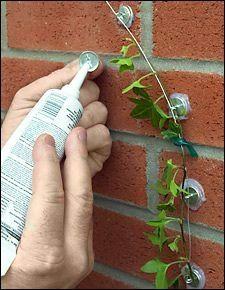 Невероятно удобные и практичные штучки для вашего сада