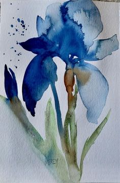 Blue Iris Floral 0266 original fine art by Michelina Frey Iris Painting, Painting & Drawing, Painting Flowers, Flower Water Color Painting, Simple Watercolor Flowers, Watercolor Paintings For Beginners, Watercolor Pictures, Abstract Watercolor, Watercolor Artists
