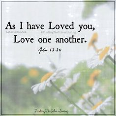 Love one another.  <3