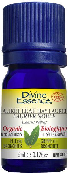 Laurier Noble | Divine Essence