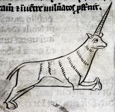 Bodleian Library, MS. e Mus. 136, Folio 108v This beast is most likely the monocerus rather than the unicorn, since there is a unicorn image on the previous page.