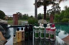 Ask She She Blog: Pamper Your Tresses with Mill Creek Botanicals