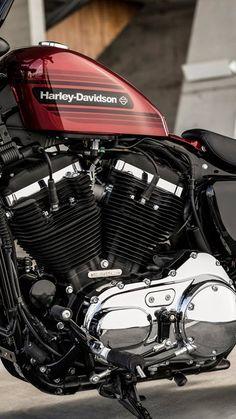 Harley Davidson Sportster 1200, Harley Davidson 48, Harley Bobber, Harley Bikes, Hd Sportster, Motorcycle Tank, Motorcycle Design, Harley Roadster, Harley 1200 Custom