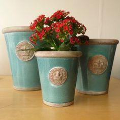 Royal Botanical Gardens Kew Ceramic Turquoise Ceramic Pots
