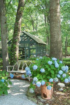 Serre dans le jardin / Greenhouse in the garden