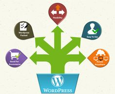 Wordpressis used by more than 74 million sites worldwide. This widely used CMS has become very popular among businesses, because of it being really powerful.  The beauty about this CMS is that it provides with ability to create a website with a blog all on the same domain name.